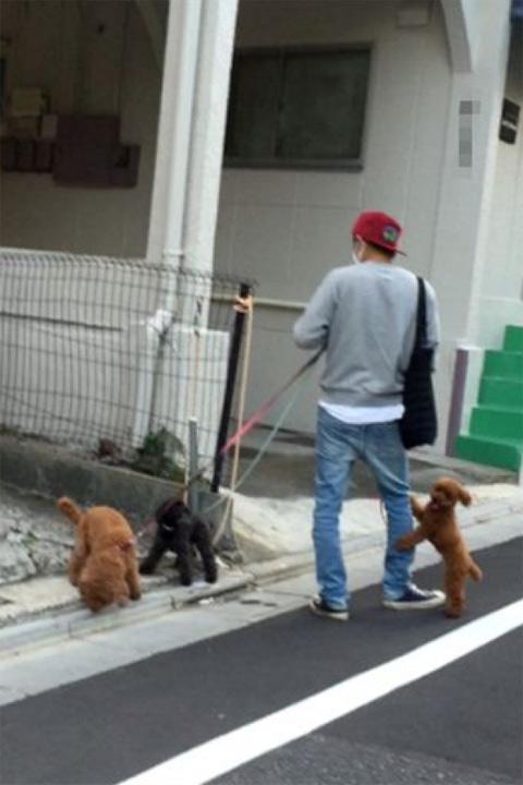 家族連れに話しかけられると笑顔で対応していた森田の散歩姿